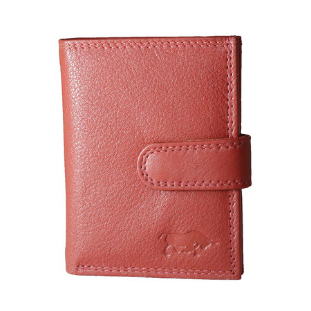 Anti skim card holder in the color red